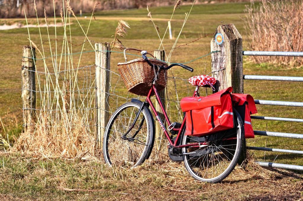 Jakie Rowery Miejskie Dla Dzieci Wybrać Jokrispl